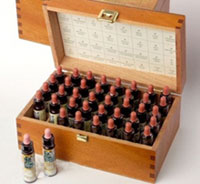 flores de bach - homeopatia